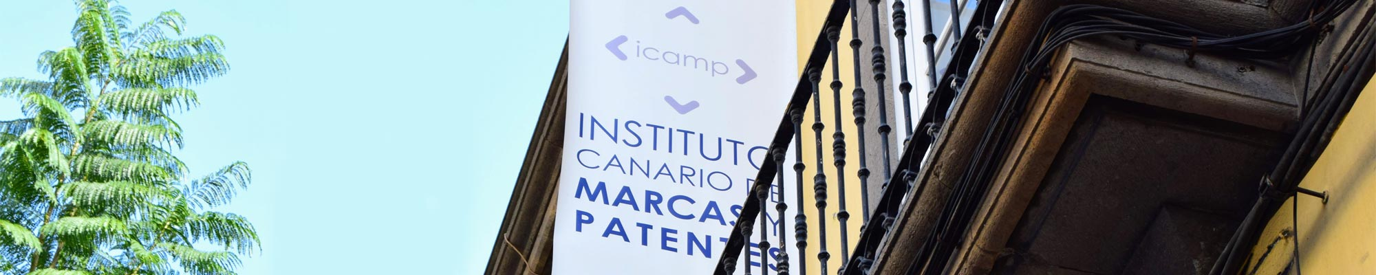 Cielo azul con un árbol a la izquierda y un balcón con la banderola del logo de ICAMP